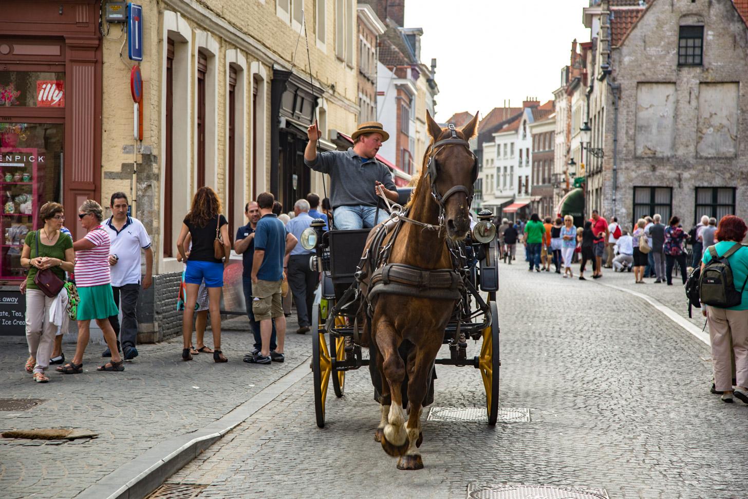 paardenkoets in Brugge